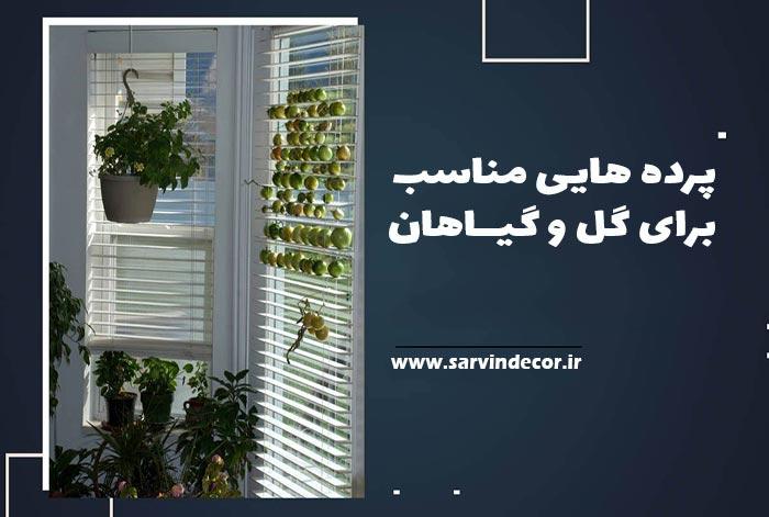 معرفی 3 نوع پرده مناسب گیاهان آپارتمانی